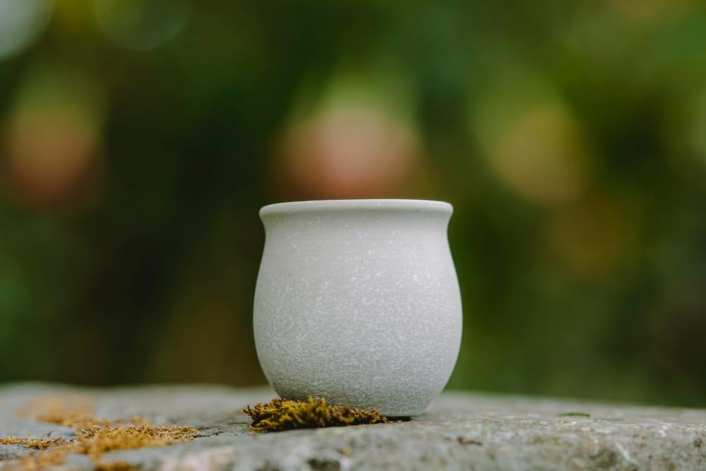 Savour Cup 10.1 Basalt