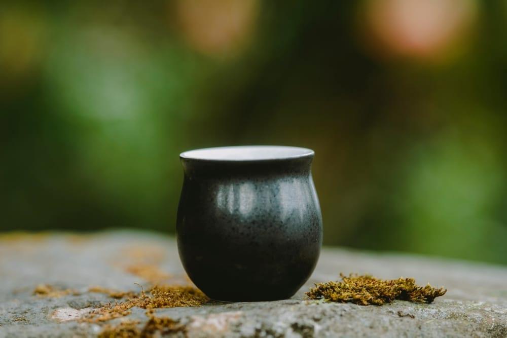 Savour Cup 10.1 Obsidian